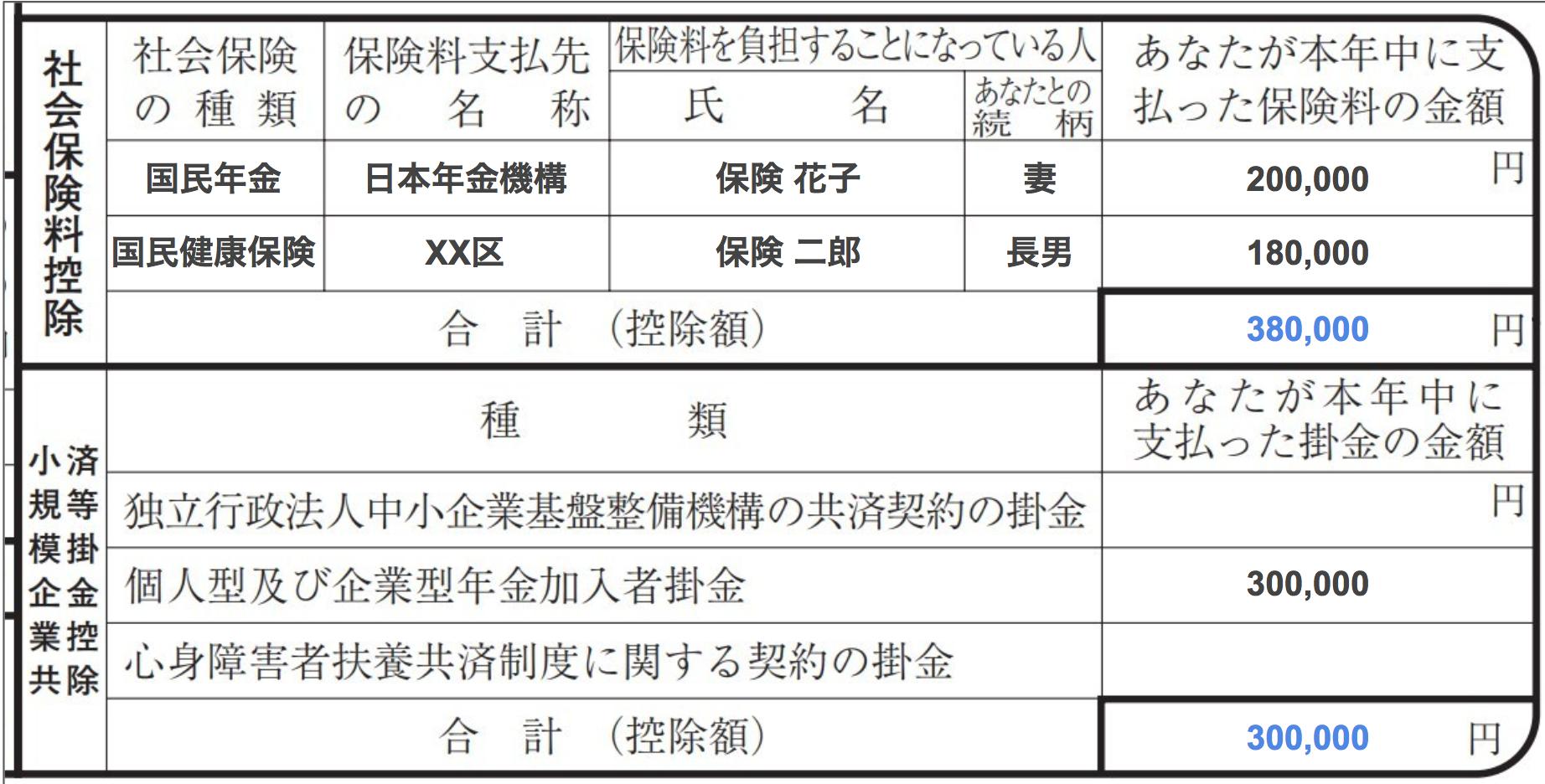 その他の保険料控除の記入例【保険料控除の書き方】