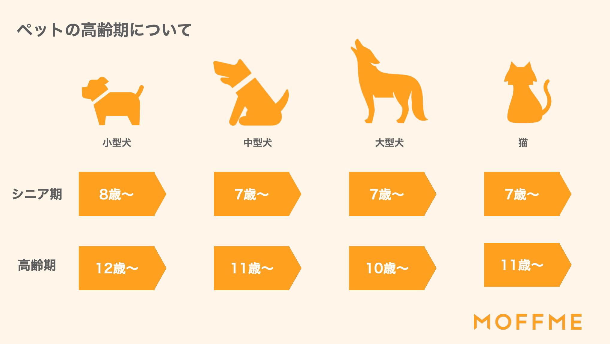 犬や猫の高齢期について